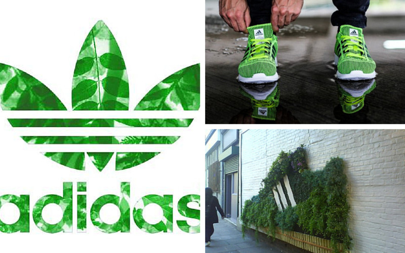 adidas chaussures recyclées